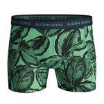 5-Pack Sammy Shorts BB Leafy, Lichen, S